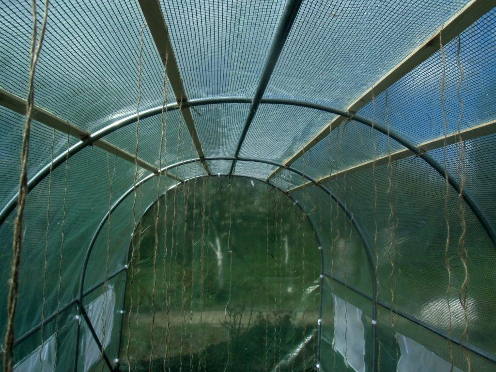 tunel foliowy