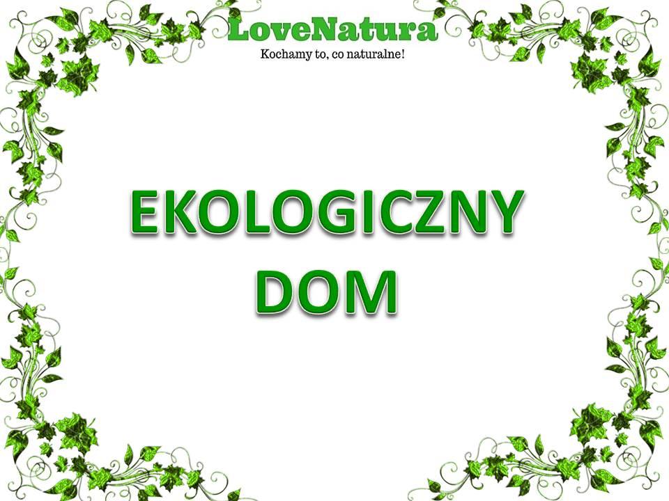 love natura ekologiczny dom