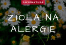 zioła na alergię