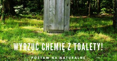 wyrzuć chemię z toalety - przepisy na naturalne środki czyszczące toaletę