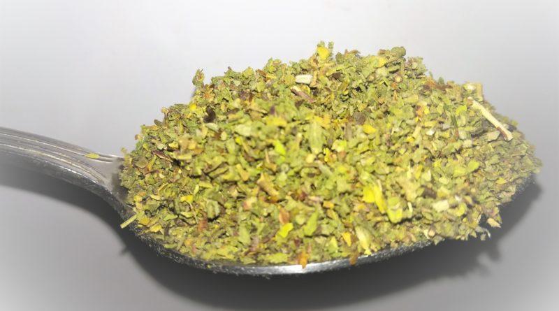 czystek - zioło, które leczy