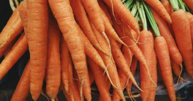Kotleciki jaglano-fasolowo-warzywne