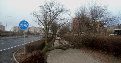 bezpieczeństwo podczas silnego wiatru