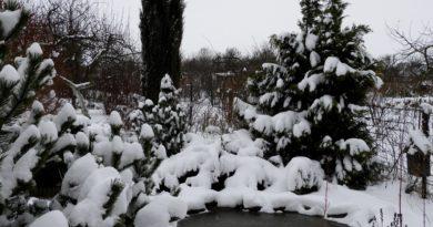 jak powstaje śnieg