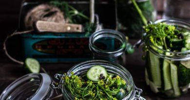 kiszonki fermentacja probiotyki