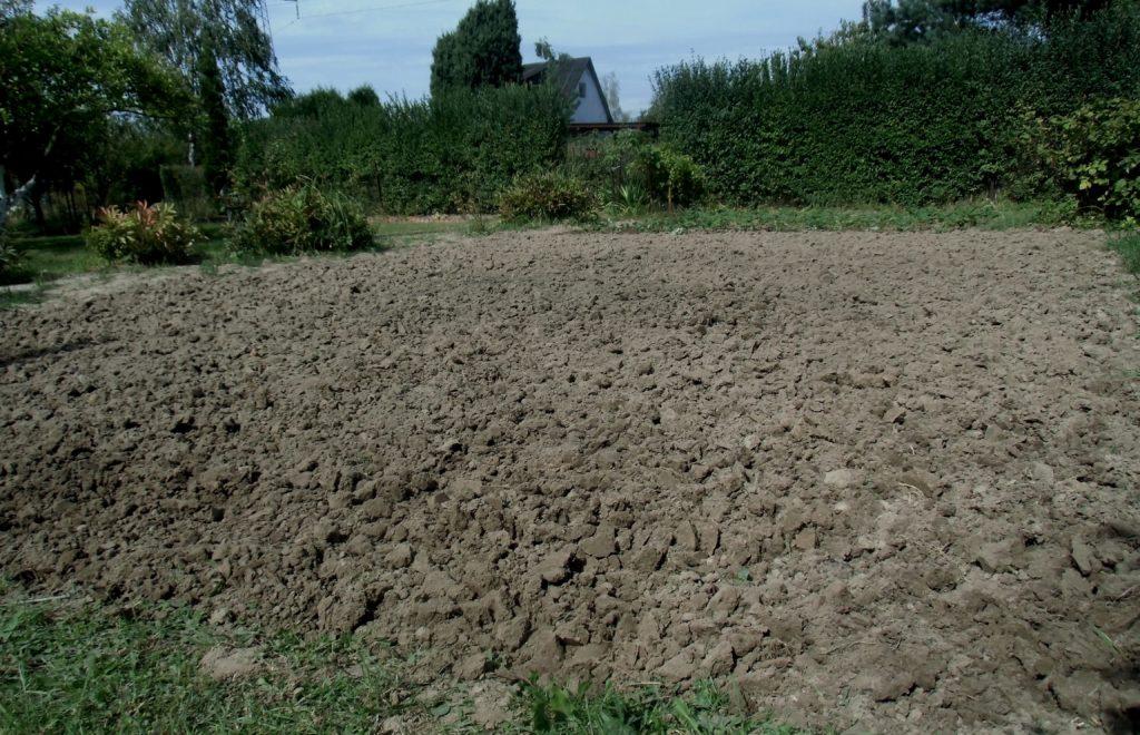 przygotowanie gleby przed zimą