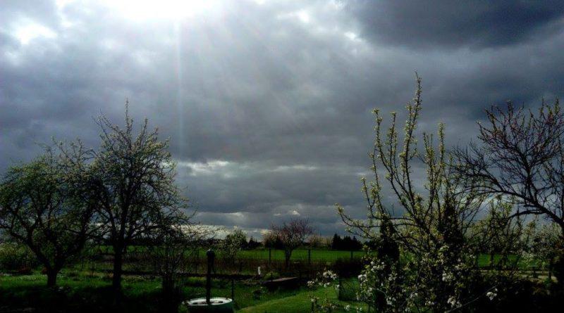 składniki pogody