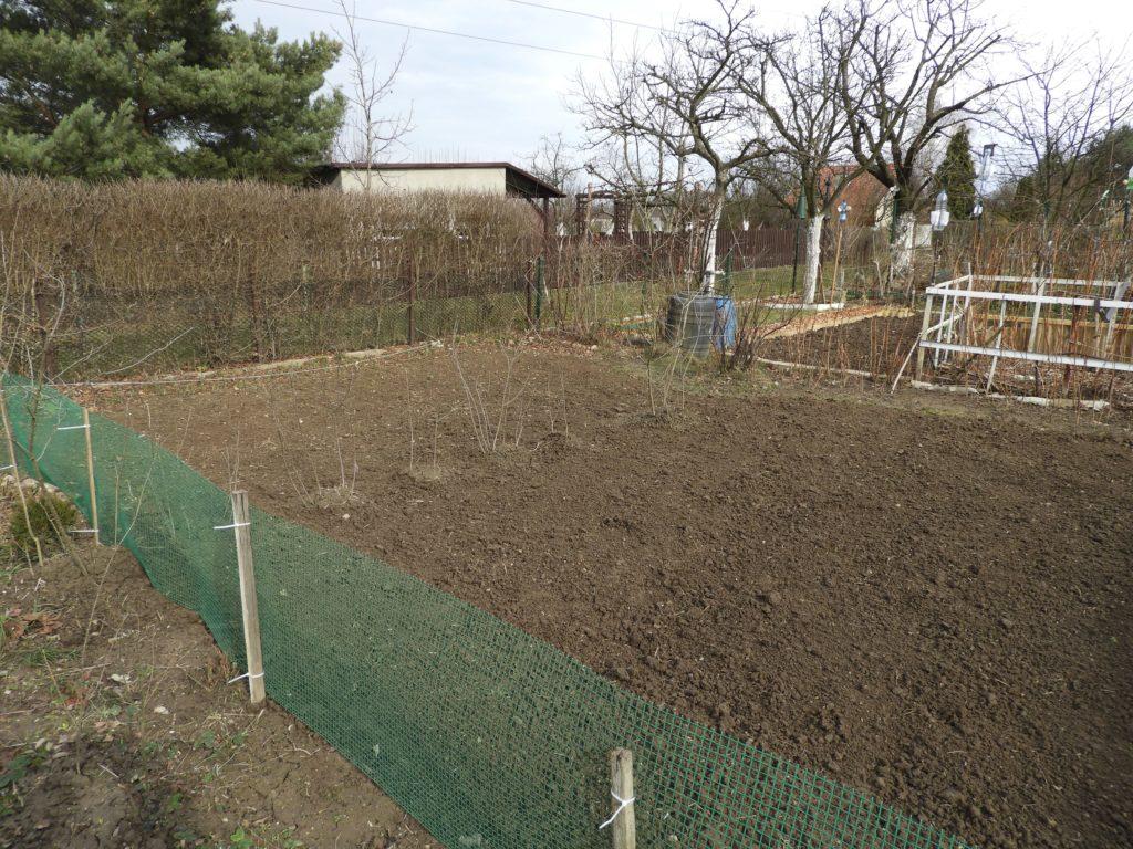 pierwsze kroki w ogrodzie