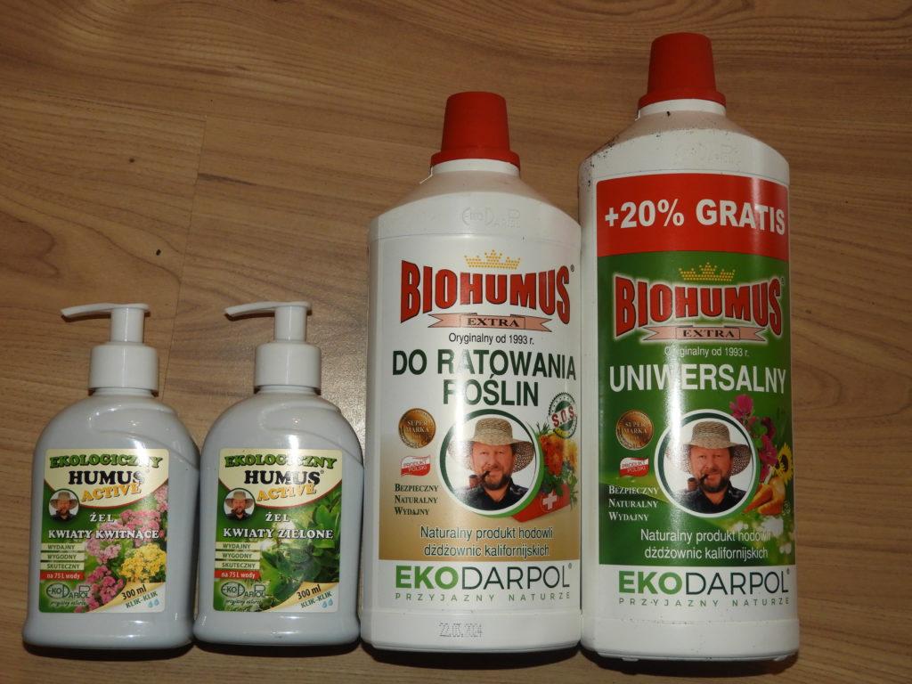jak dbać o rośliny doniczkowe humus active