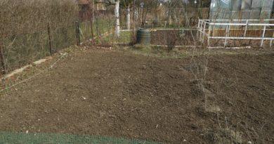 jak poprawić strukturę gleby