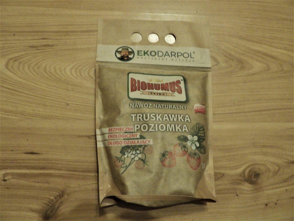 jak uzyskać wysokie plony truskawek