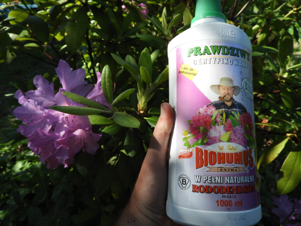testowanie biohumus extra rododendron