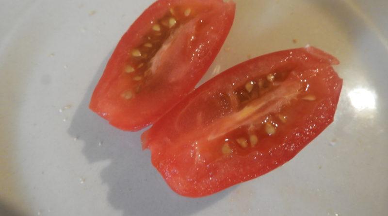 pozyskiwanie nasion z pomidorów