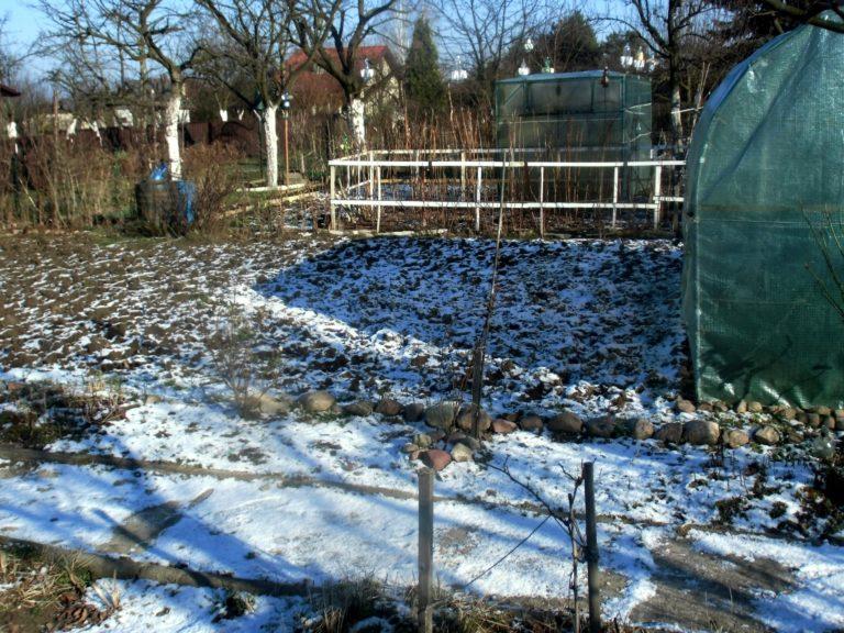 termin okrywania roślin na zimę