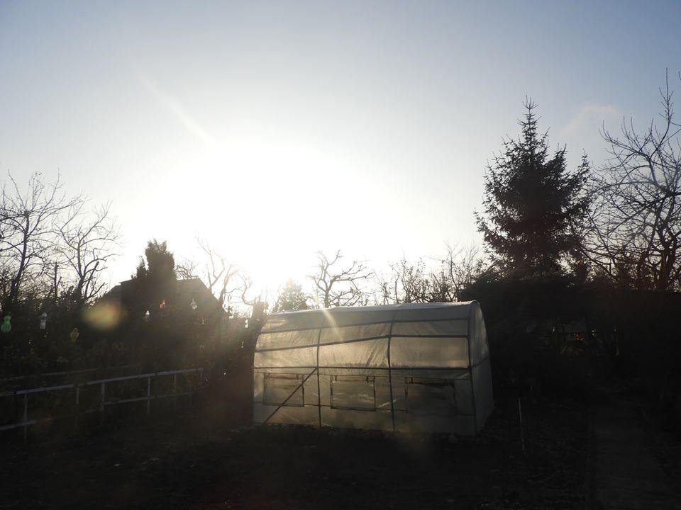 ciepła zima w ogrodzie i działce