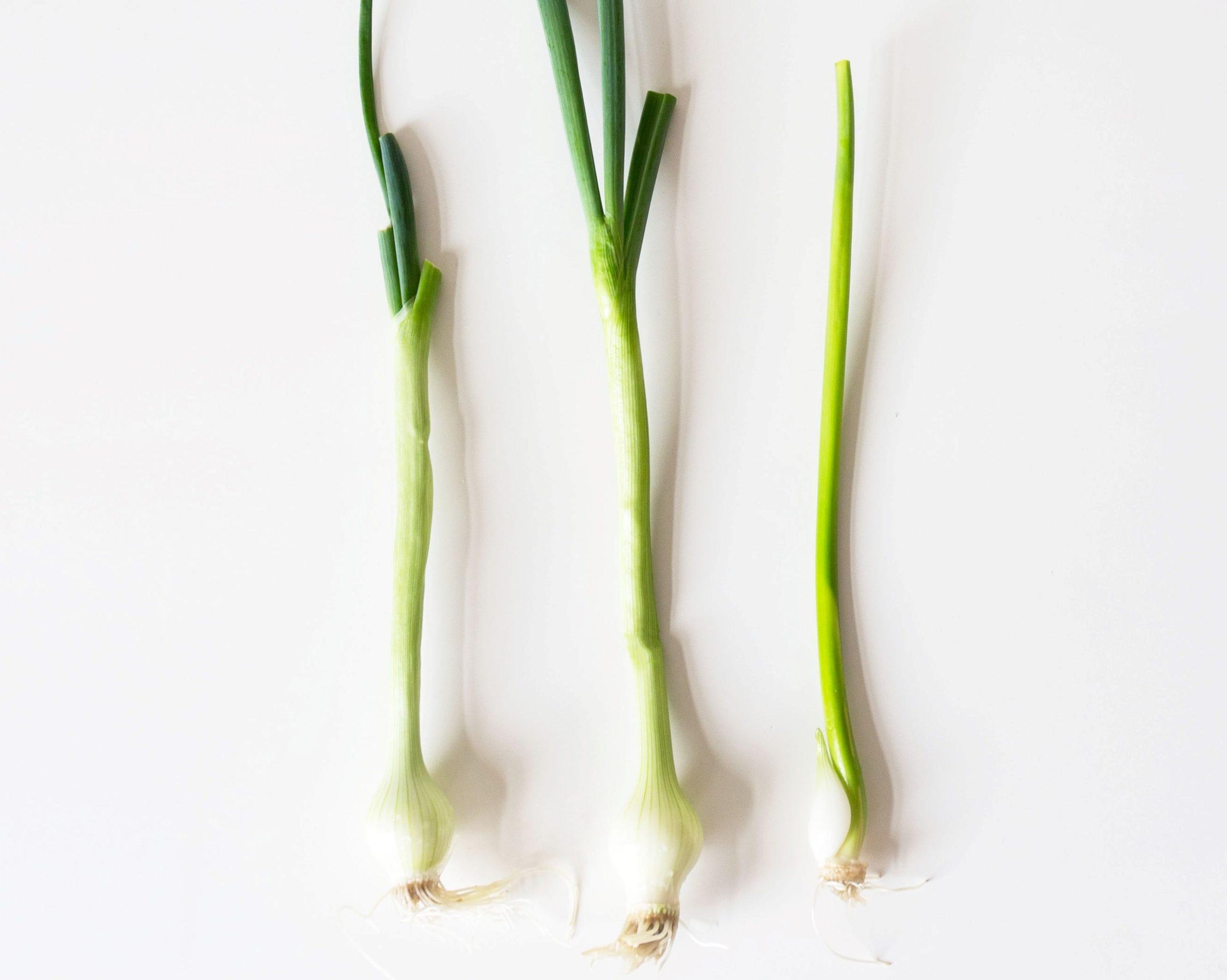 warzywa z resztek - cebula dymka