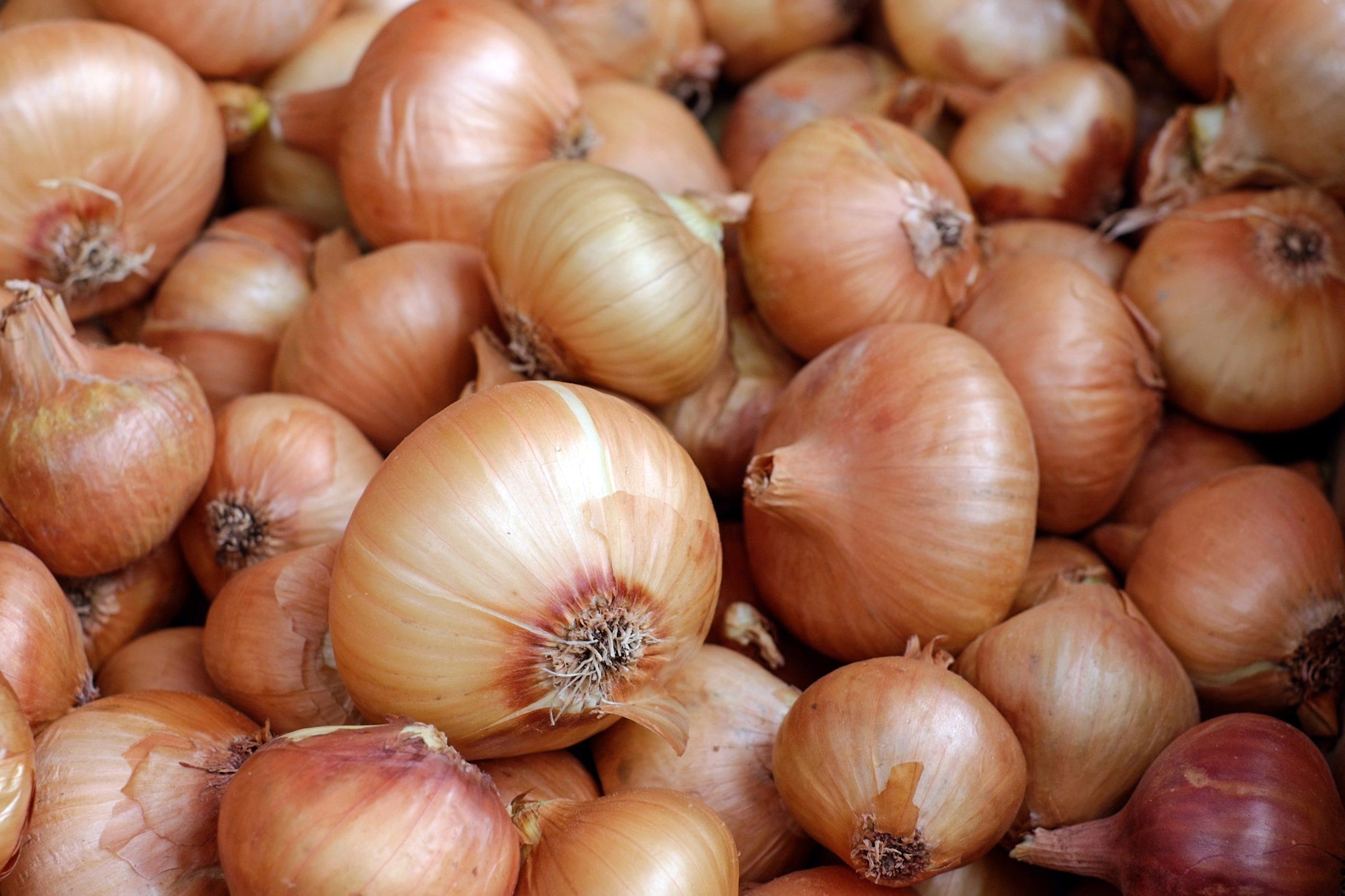 warzywa z resztek - cebula resztki warzyw