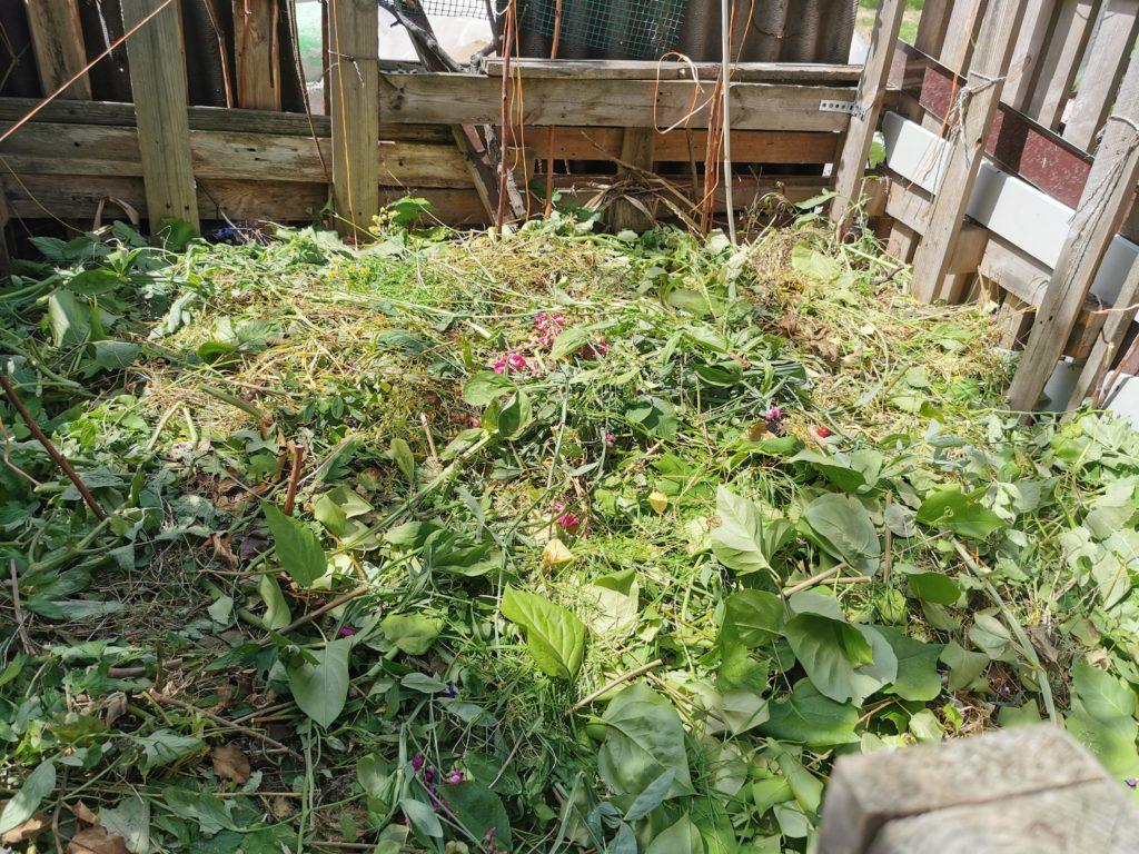 co wrzucać na kompost w ogrodzie