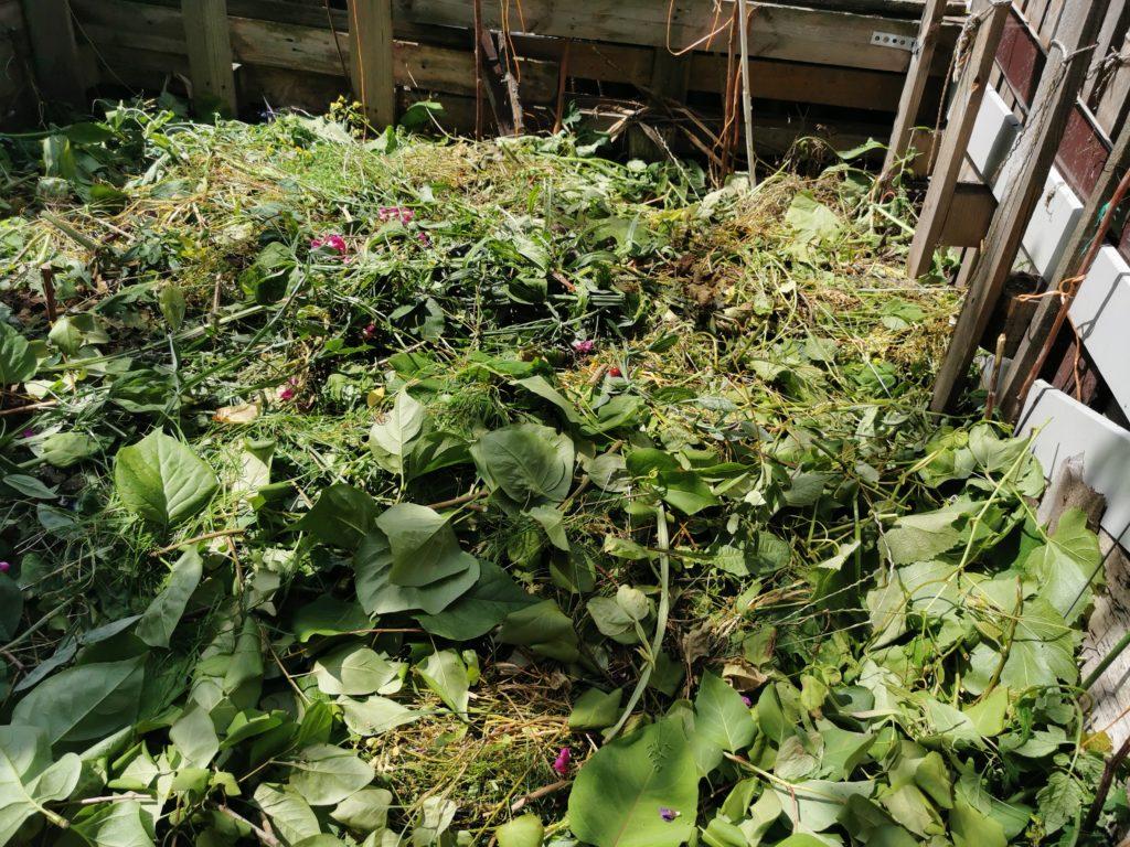 czego nie wrzucać do kompostu