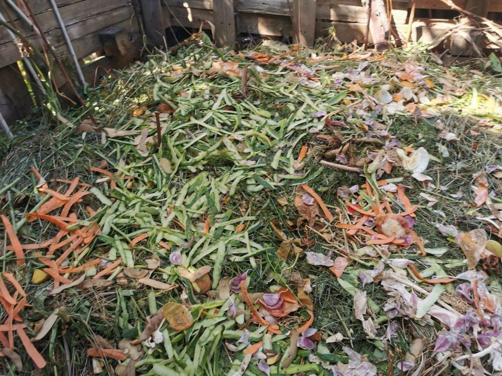 ekologiczny ogród kompost