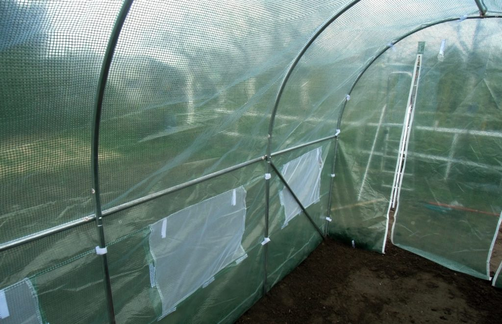 usytuowanie tunelu w ogrodzie