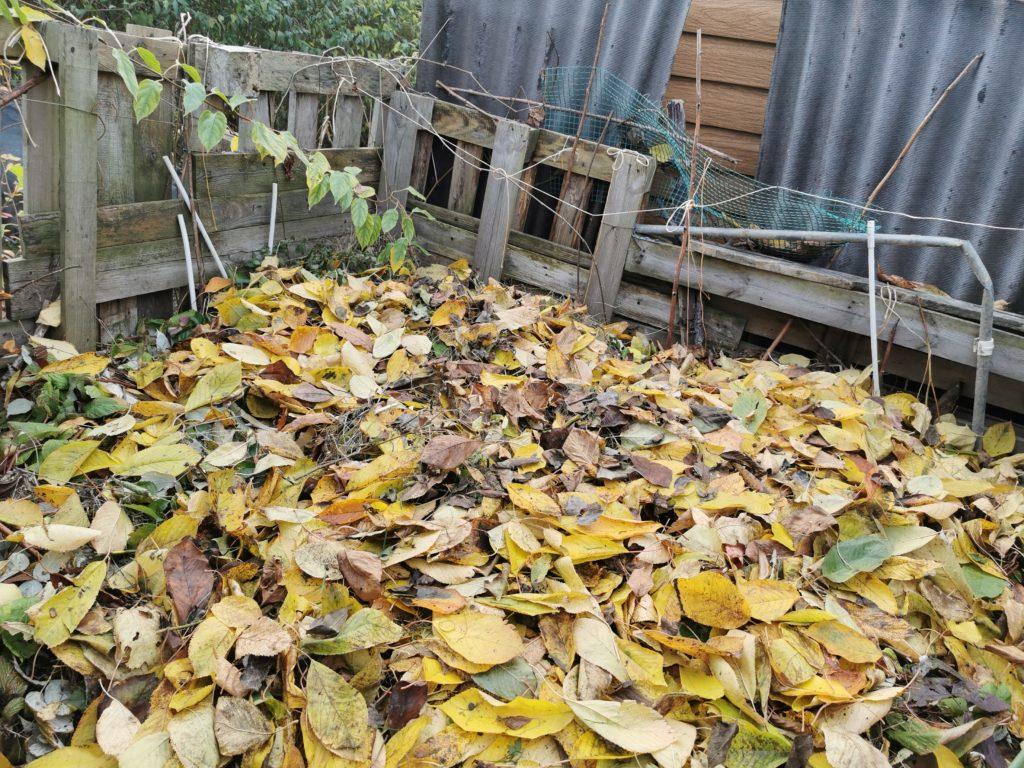 jak zabezpieczyć kompost przed zimą