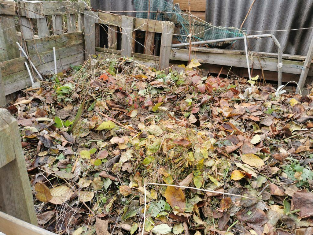 kompost ochrona przed gryzoniami