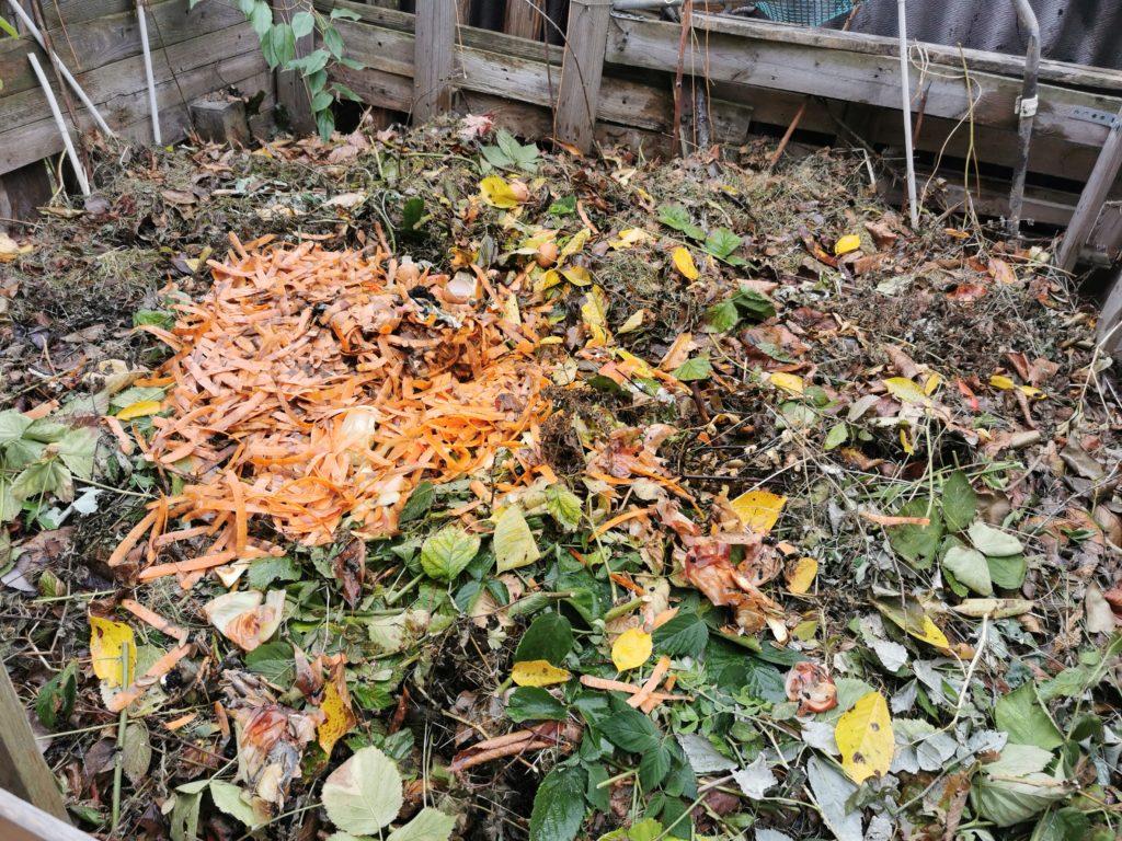 kompost przed zimą