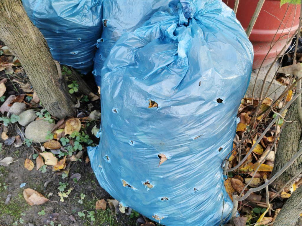 kompostowanie liści w worku