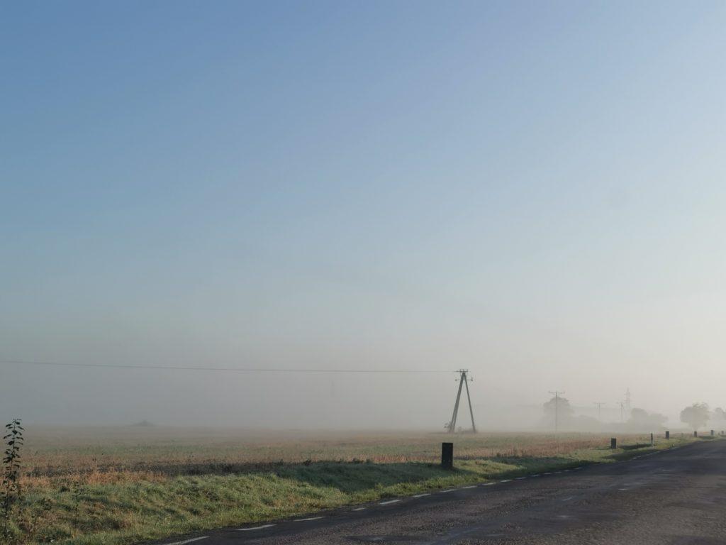 rodzaje mgieł
